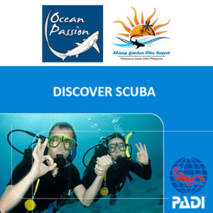 PADI DSD Ocean Passion Malapascua